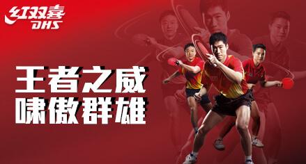 上海体育用品网  DHS红双喜品牌羽毛球拍