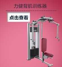 LIFEFITNESS力健 局部力量训练 单功能训练器 蝴蝶式胸肌/背肌训练器