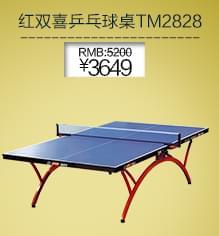 DHS红双喜 TM2828 乒乓球桌 折叠式乒乓球台