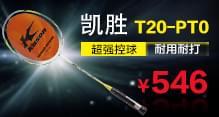 KASON凯胜羽毛球拍 Twister T20-PT王仪涵