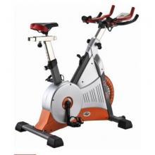 EVERE艾威 BC8520 健身车 室内超静音 自行车 高档磁控